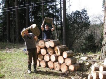 Canadian WWOOFers Deb & Liam Hauling Firewood
