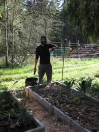 English WWOOFer Mahtola Planting Garlic