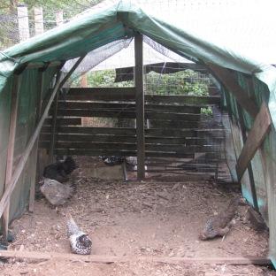 Covered Shelter