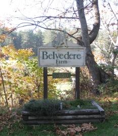 Belvedere Farm