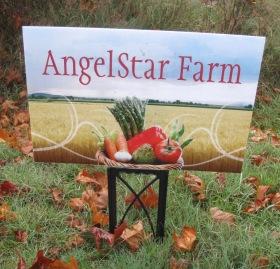 Angel Star Farm