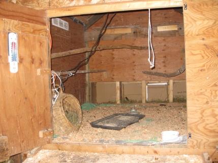 Jacqueline's Coop - Interior