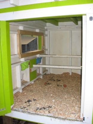 Rena & Darren's Coop - Interior