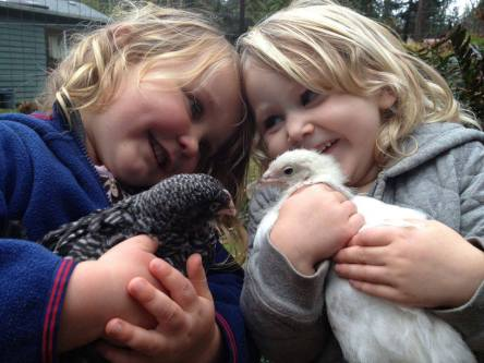 KIds & chicks