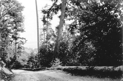 Brickyard Hill 1900