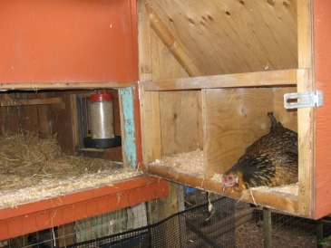Pull-out Nestboxes