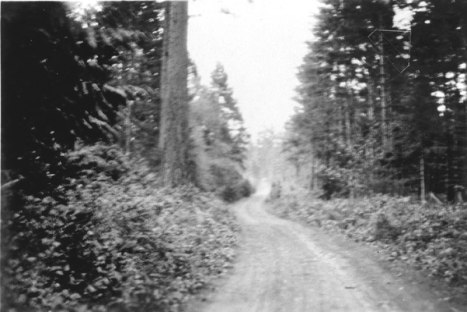 North Road 1900