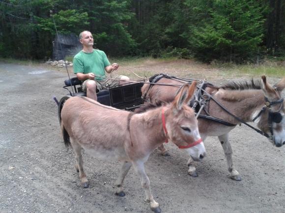 Em & Donkeys