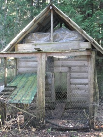Chicken Coop - back
