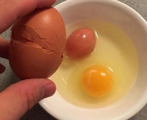 Egg Within Egg
