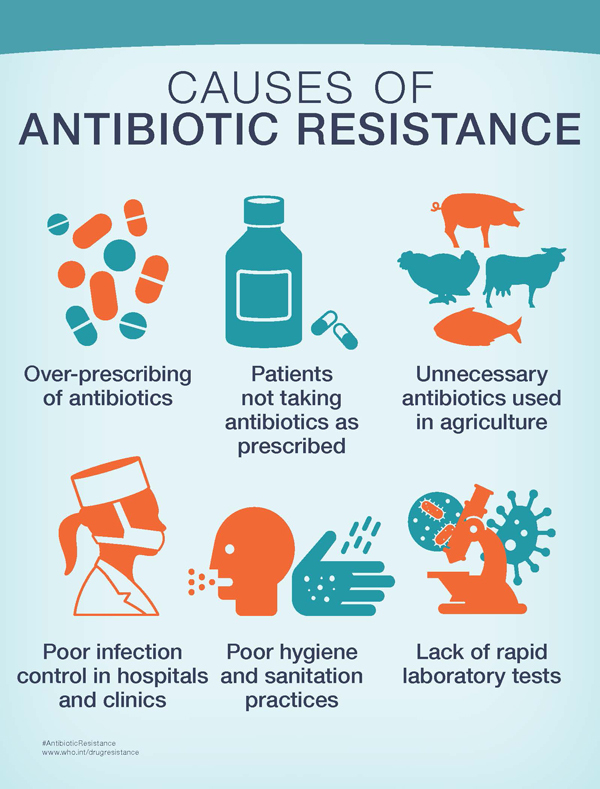 infographic-small-antibiotic-causes_original