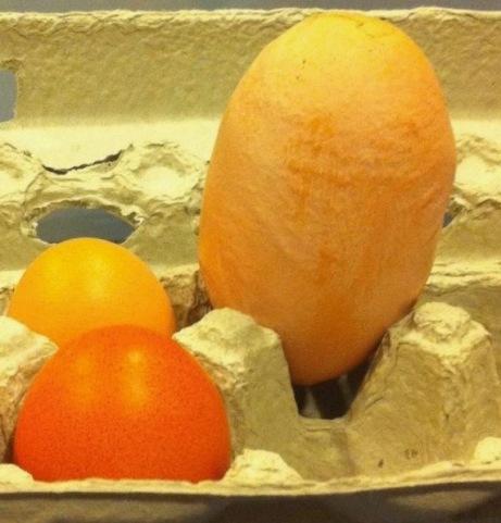 Jumbo Egg