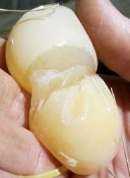 Odd Shaped Egg