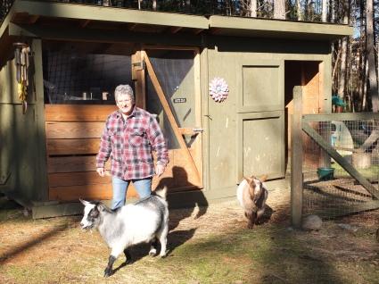 Brenda with Osa & Nya, Nigerian Dwarf Goats