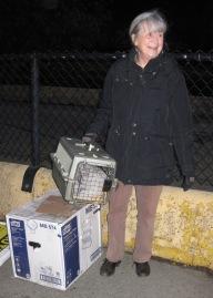Carolann At The Ferry