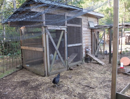 Carol's Coop (Exterior)