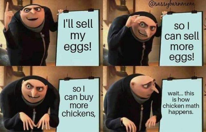 How Chicken Math Happens
