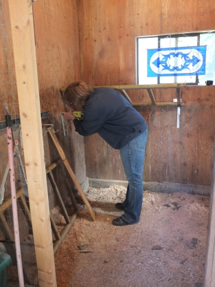 Tracy Installing Roost Bars