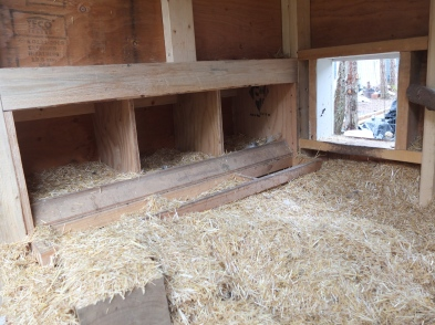Nest Boxes Accessible From The Outside