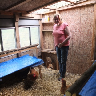 Cynthia In The Coop