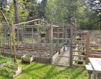 Cynthia & Peter's Garden
