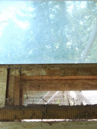 Hector's Coop Window & Ventilation