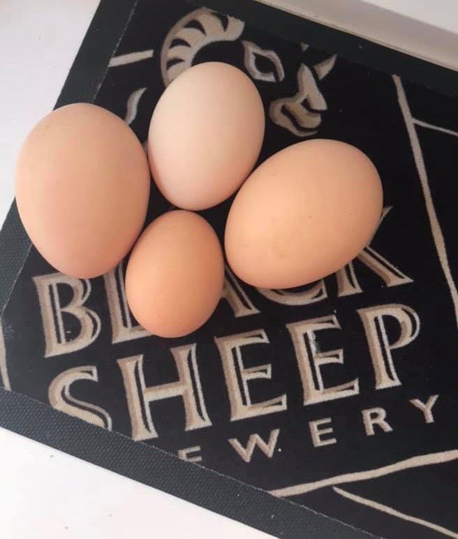 Nanette's Eggs