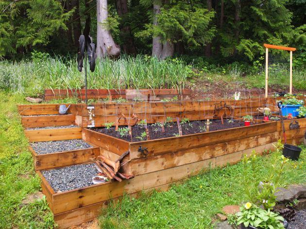 Nanettte & Steve's Terraced Garden