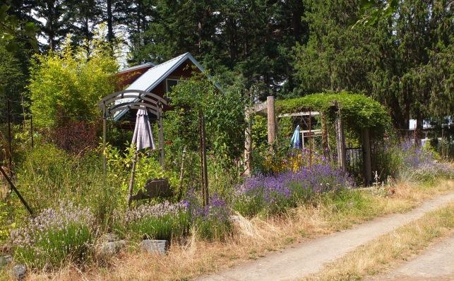 My House & Garden