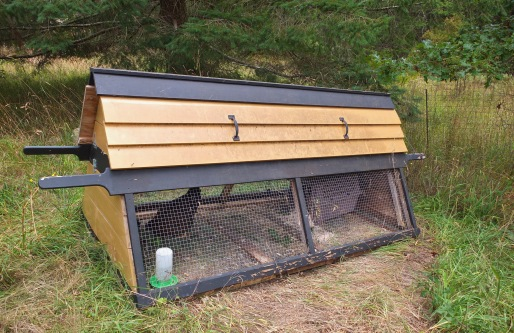 Mobile Chicken Tractor
