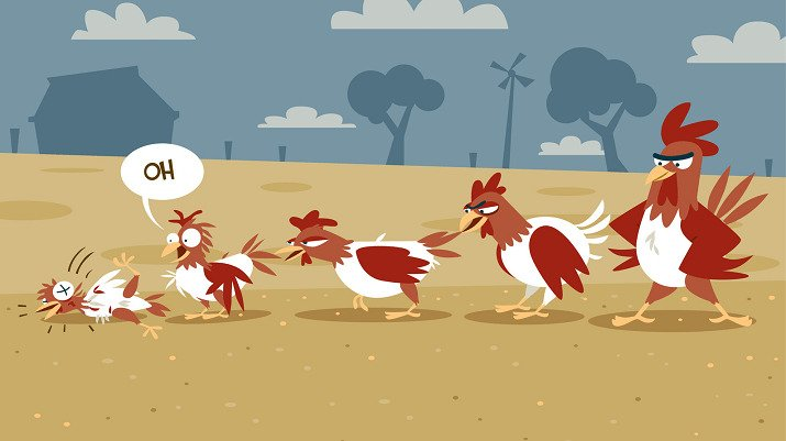 Chicken Bullying Behaviour