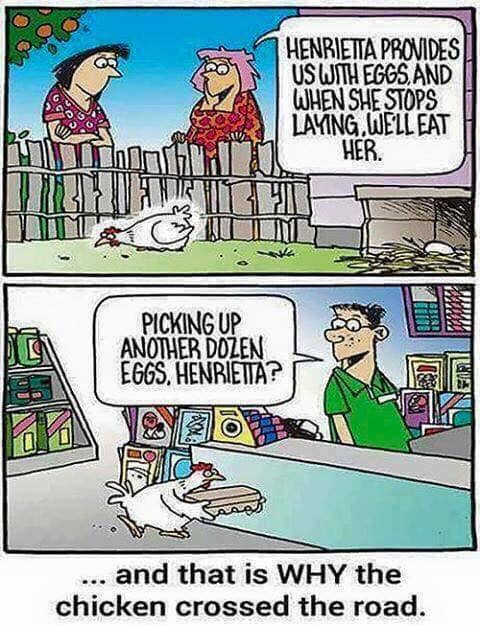 Why The Chicken Crossed