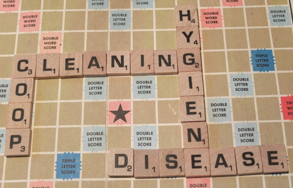 Coop Cleaning Scrabble