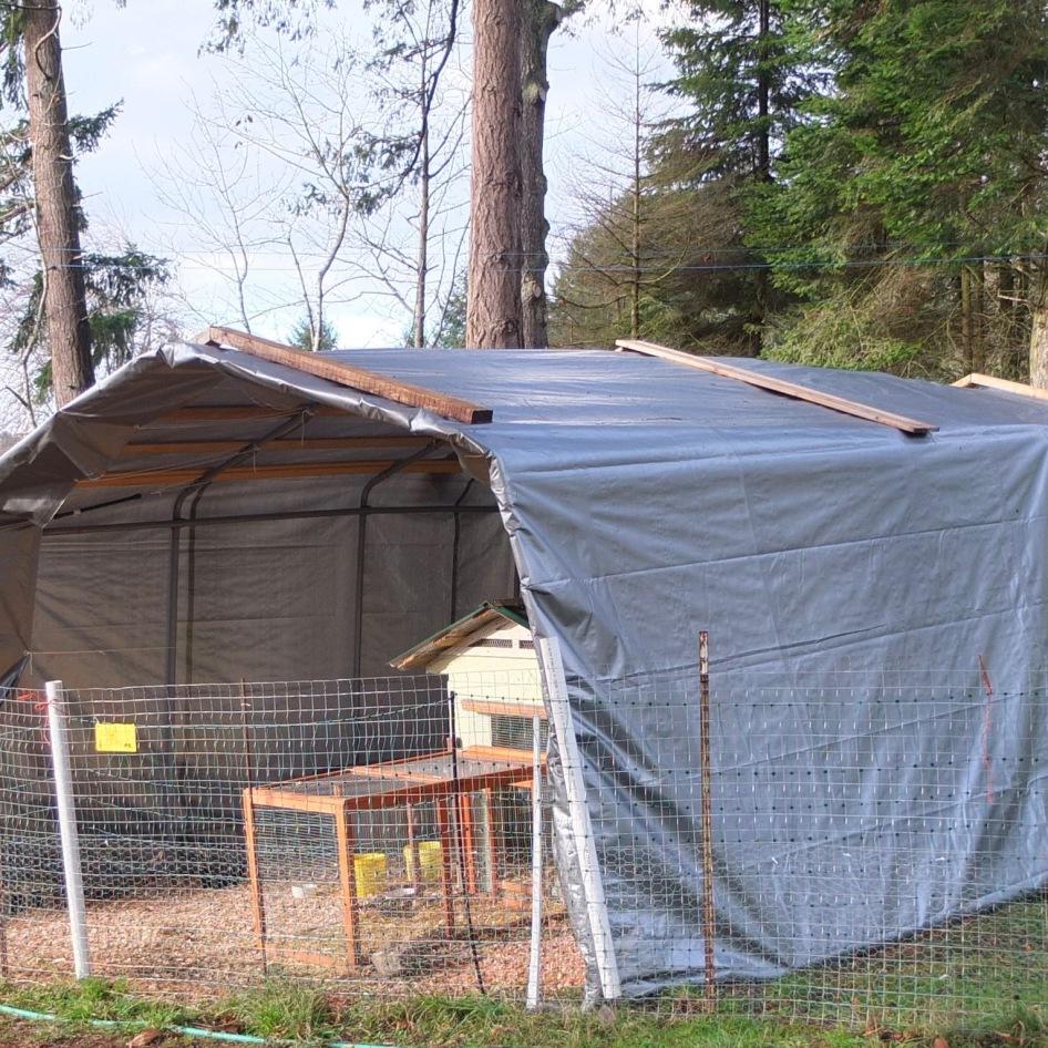 Poultry Shelter