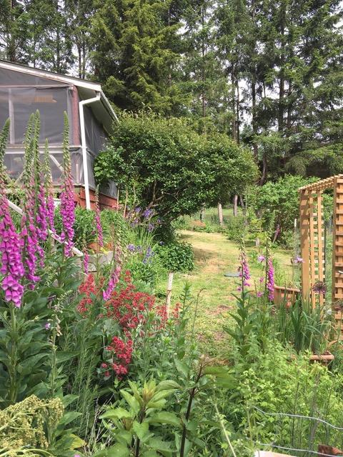 Brin's Garden