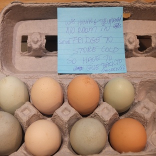 Returned Eggs
