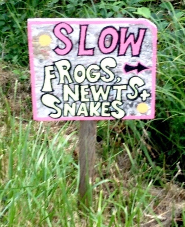 Slow Sign (Credit: Liz Cioccea)