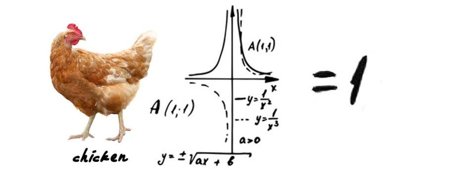 Chicken Equation