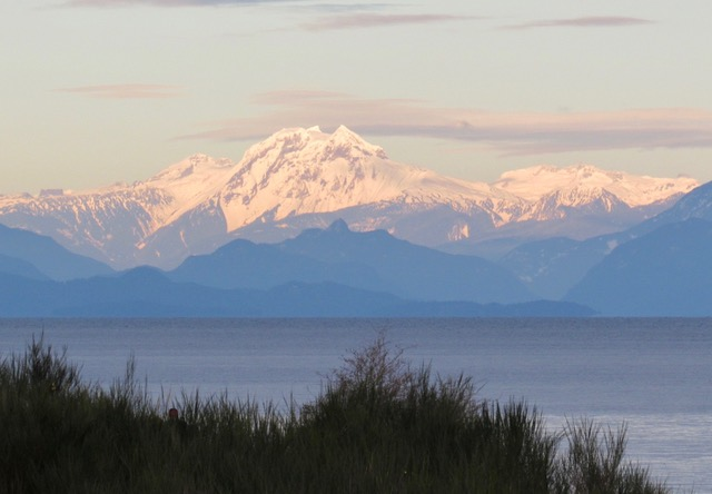 Mt Baker From Drumbeg Park (Credit: Pam Dineen)
