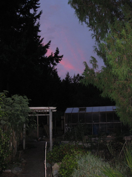 Sunset Over My Greenhouse