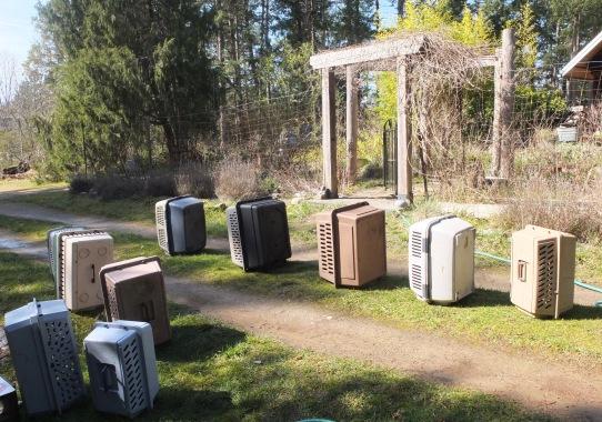Hosed Crates