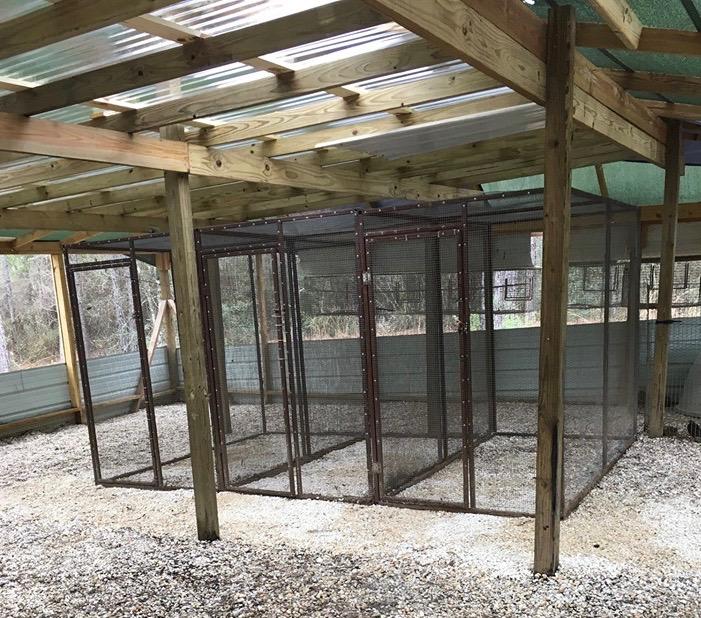 Rebuilt Aviary (Credit: Jamie Tindell)