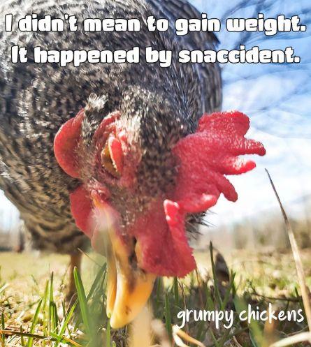 (Credit: Grumpy Chickens)