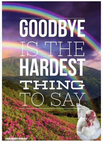 Goodbye Is The Hardest Thing To Say